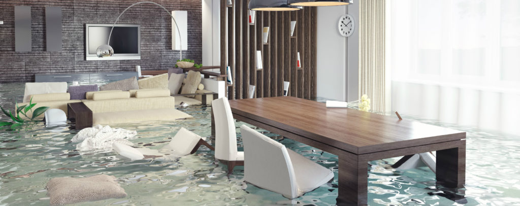 Water Damage Cleanup in Ignacio, CO (3480)