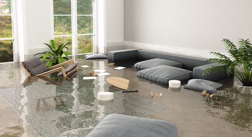 Flood Damage Repair in Durango, CO (8964)